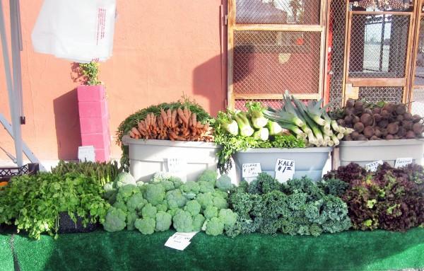 A Flourishing Farmers Market