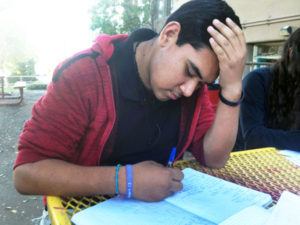 Roosevelt HIgh School junior Guadalupe Castro works on homework after school. Photo by Jennifer Lam