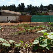 Planting seeds of change in East Los Angeles