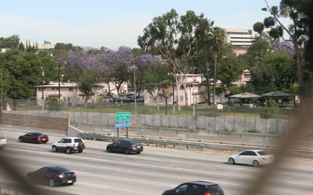 Community input sought for Nature Park proposed at Ramona Gardens