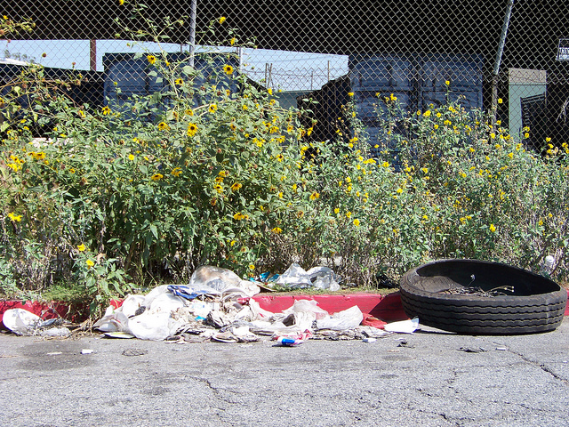 Los Angeles sanitation department ordered to answer ignored calls for trash pick ups