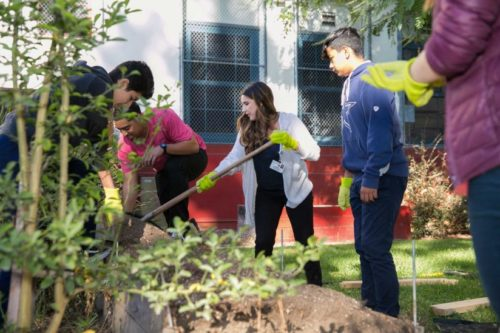 Keck Medicine of USC donates Teaching Garden to Hollenbeck Middle School